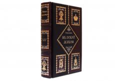 Книга Великий Жуков