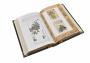 "Книга Ямамото Цунэтомо ""Кодекс самурая"""