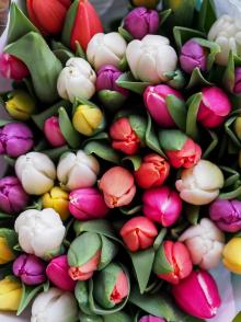 С Днем весны!